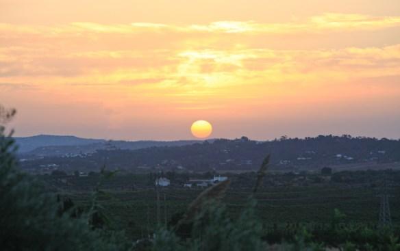 solnedgang-portugal-rosa