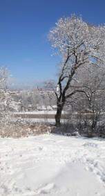 torsby-påsk-träd-snö