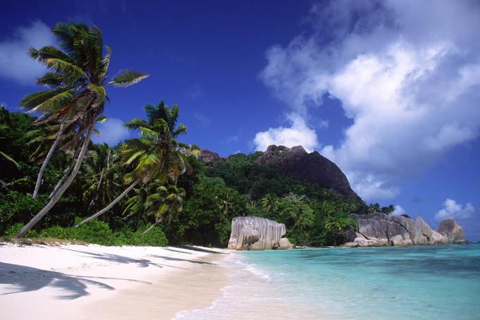Beach, palm trees and granite rocks.