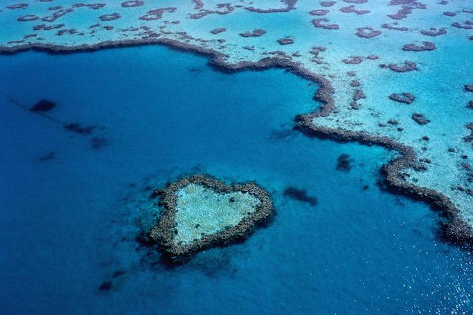 grande barriere de corail australie