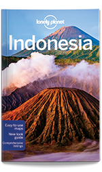Indonesia travel guide, 11th Edition Jul 2016 by Lonely Planet
