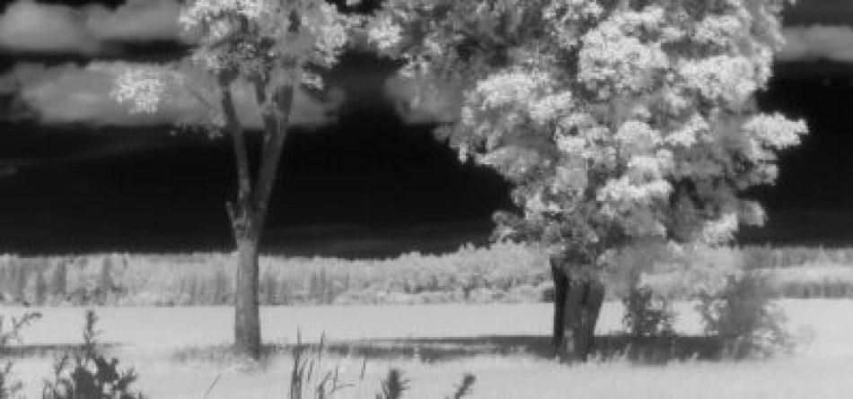 GoPro filmar infrarött