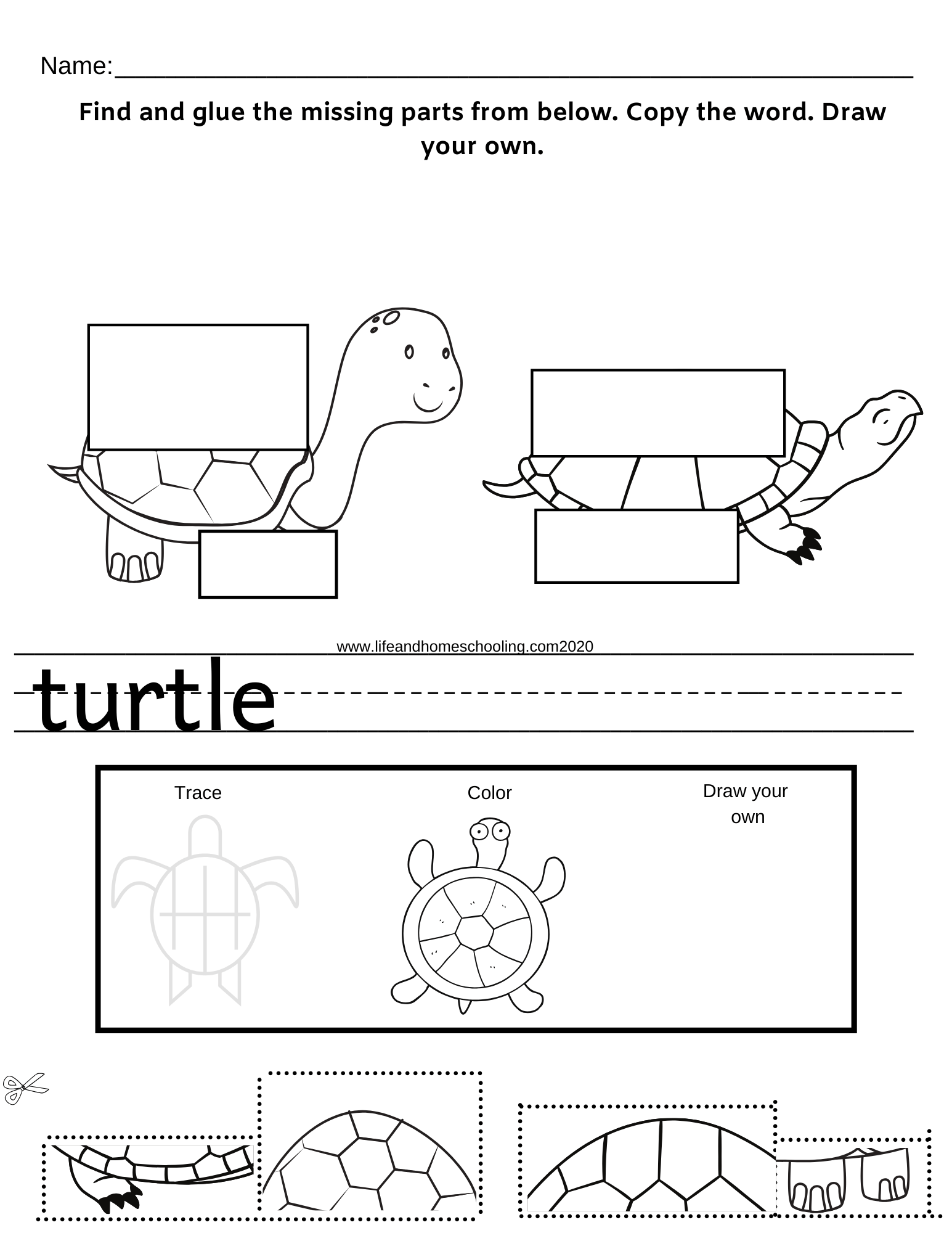 Preschool Kindergarten Critical Thinking Worksheet