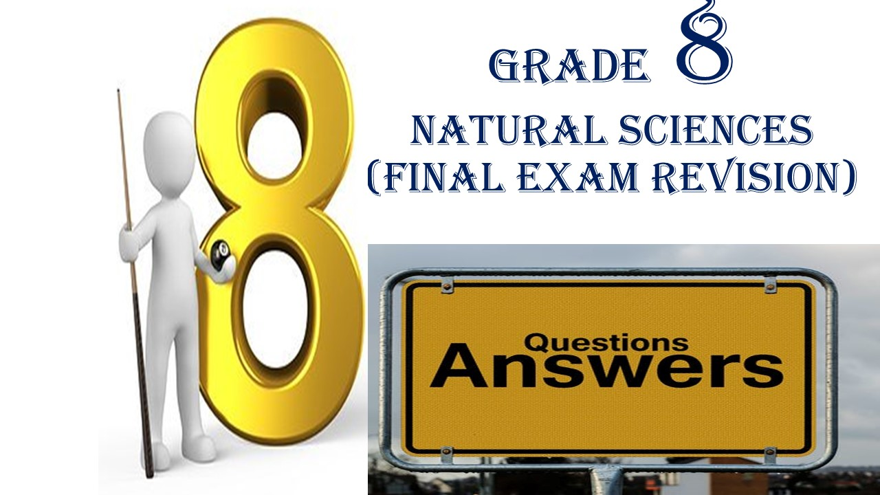 hight resolution of Gr 8 NATURAL SCIENCES WORKSHEET 1 (25 pages)(FINAL EXAM REVISION QUESTIONS  - Made By Teachers
