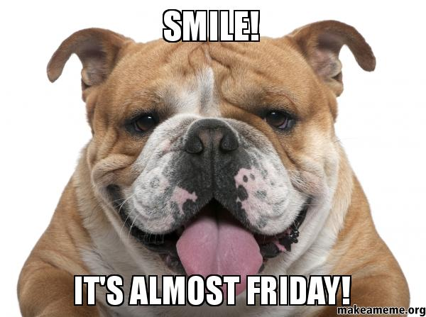 Thursday Almost Friday Dog