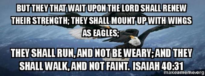 Image result for they that wait on the lord shall renew