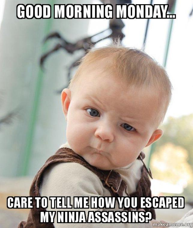 good morning monday... care to tell me how you escaped my ninja assassins?  - Skeptical Baby | Make a Meme