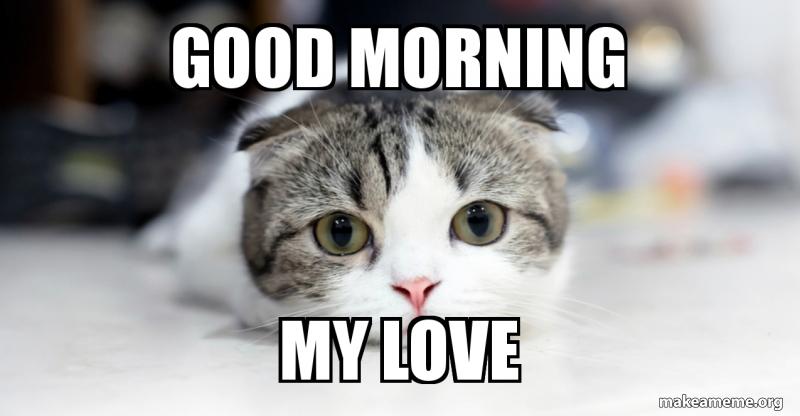 Good morning my love | Make a Meme