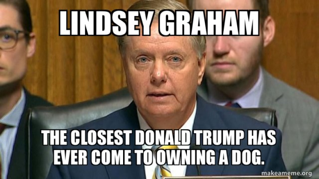 lindsey graham the closest donald trump has ever come to owning a dog. |  Make a Meme