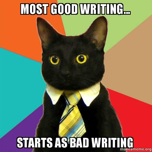 Most good writing... starts as bad writing - Business Cat | Make a Meme