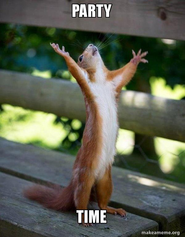 Party Time Meme : party, PARTY, Happy, Squirrel