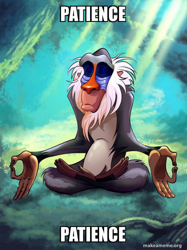 Patience Meme : patience, PATIENCE, Rafiki, Meditating