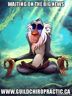 Big News Meme : Waiting, Www.guildchiropractic.ca, Rafiki, Meditating