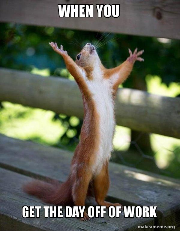 Day Off Meme : Happy, Squirrel