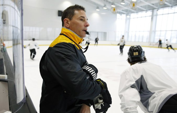 Image result for bruce cassidy bruins