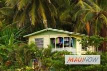 maui vacation rental association