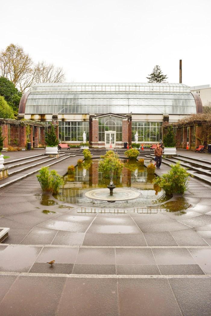 winter garden växthus i auckland domain
