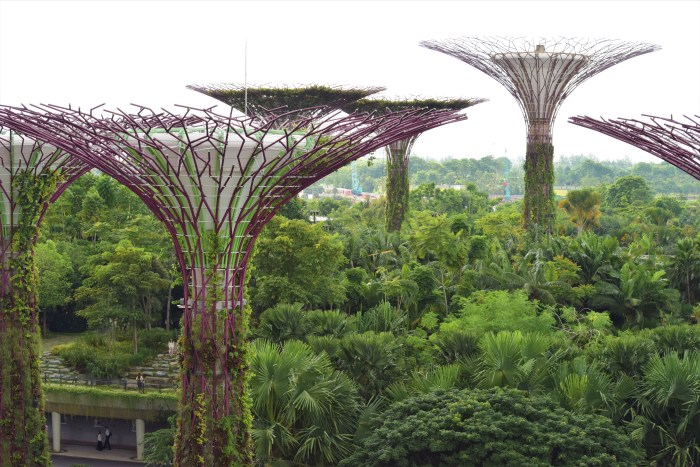 ta sig till gardens by the bay
