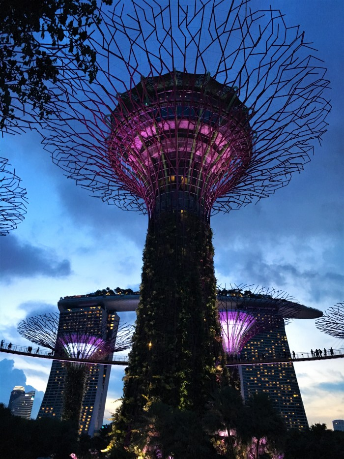 ljusshow gardens by the bay