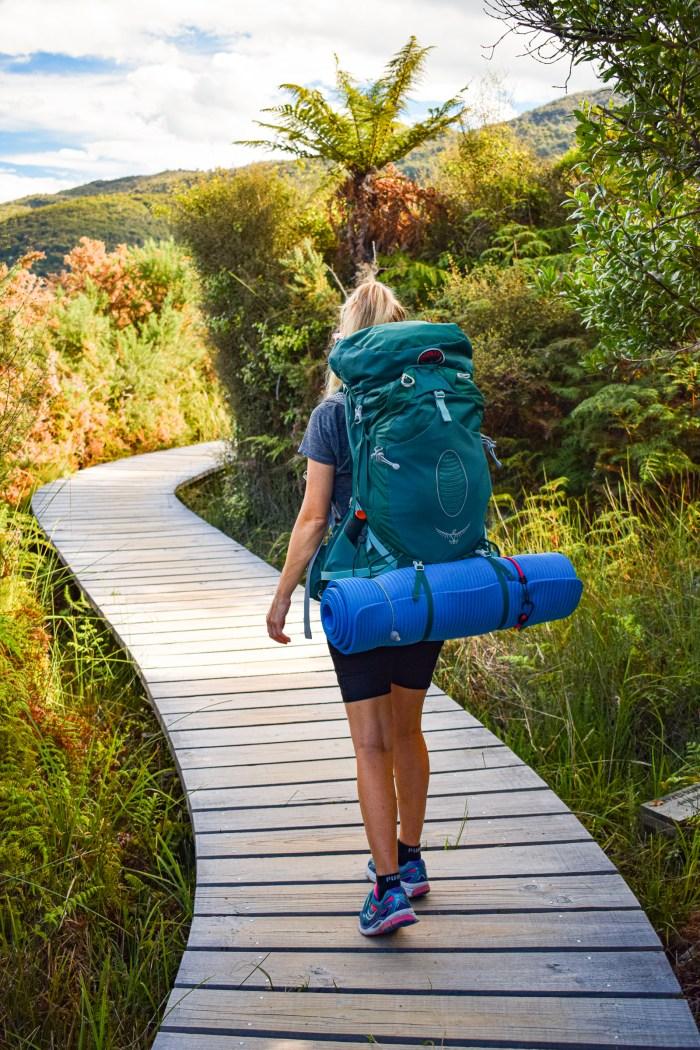 jag vandrar på spång i abel tasman nationalpark.