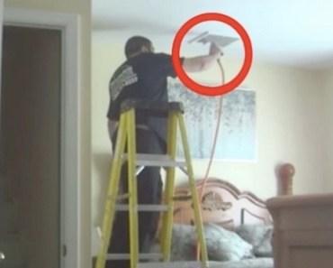 Kvinnan sätter upp hemliga kameror i huset. När hon ser vad hantverkaren gör blir hon RASANDE!