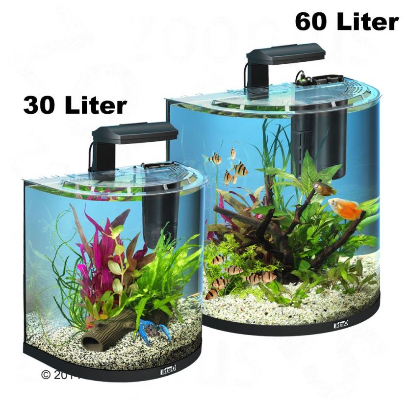 Kit d'aquarium Tetra AquaArt Explorer Line Halfmoon - transparent