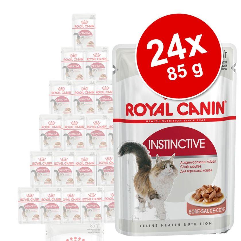 24x85 g Digest Sensitive Royal Canin - Nourriture pour Chat