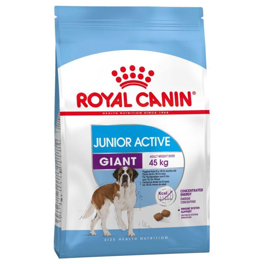 2x15kg Giant Junior Active Royal Canin pour chiot