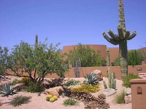 landscape creations of arizona