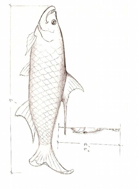Tarpon drawing two from Outdoor Arts Foundation in