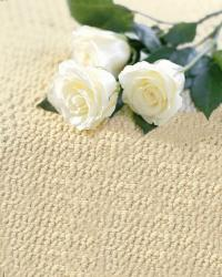 Modern Floors Carpet One - Walled Lake MI 48390 | 248-624-0333