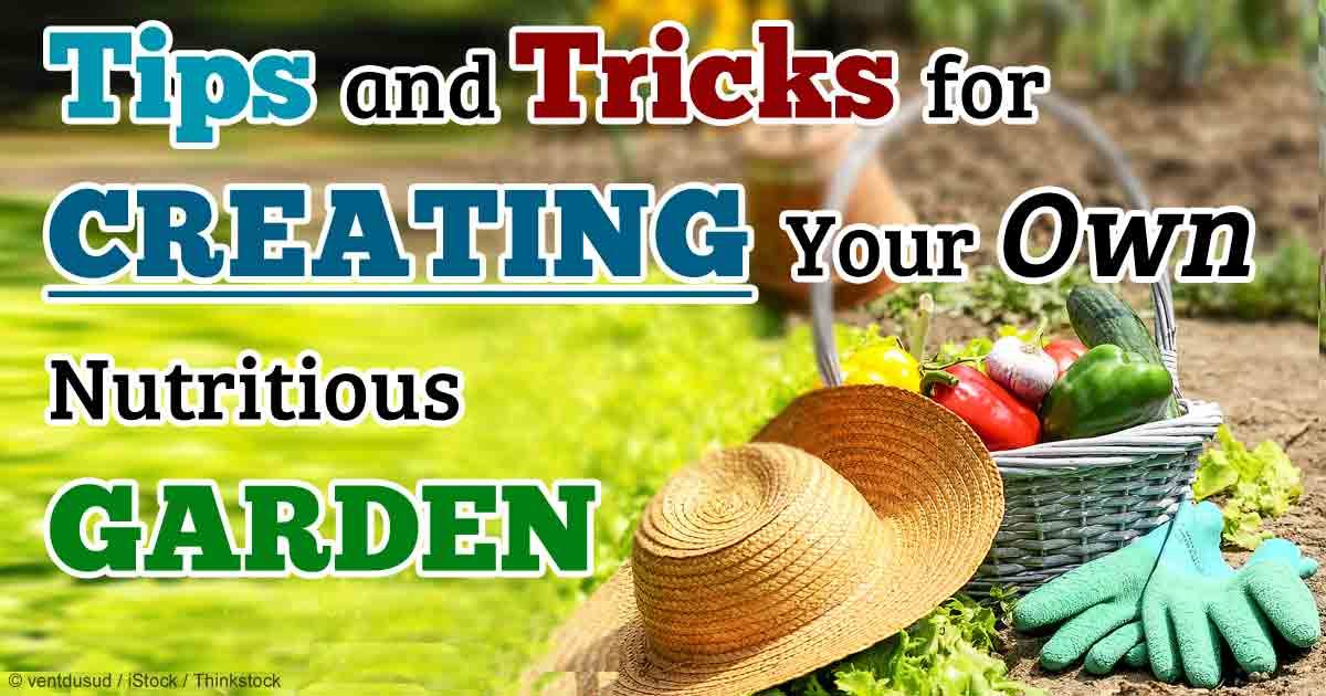 It's Time To Make Your Own Vegetable Garden