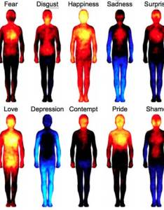 he results likely reveal subjective perceptions about the impact of our mental states on body  combination muscle and visceral reactions also mapping how emotions manifest in your eft benefits rh articlesrcola