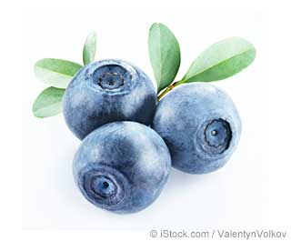 Bilberry Nutrition Facts