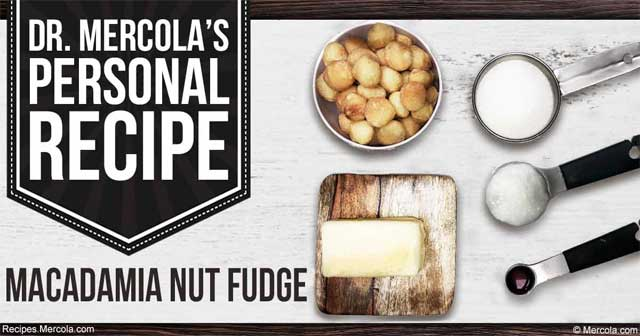 Dr. Mercola's Macadamia Nut Fudge Recipe