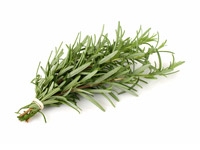 Ultimate Guide to Herbal Oils Rosemary-oil