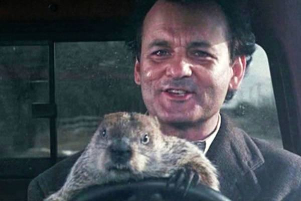 Groundhog Day Quotes | Happy Groundhog Day Quotes Imgurl