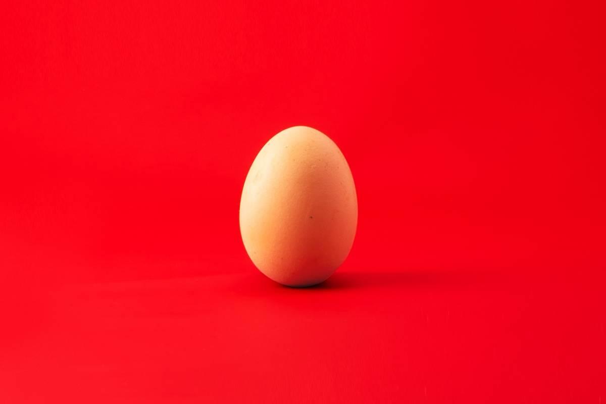Comer um ovo por dia não apresenta um grande risco para a saúde