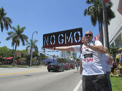 In May, more than 1,300 Miami protesters joined the global march against Monsanto.