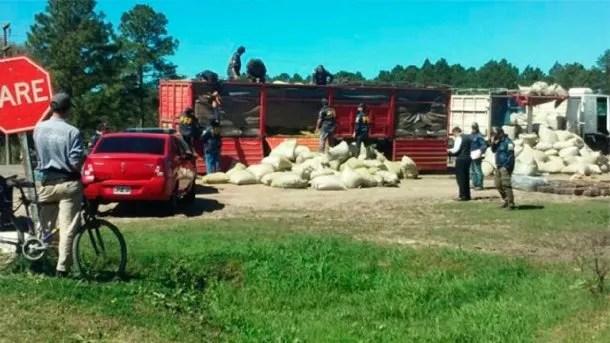 Incautaron 10 toneladas de marihuana - Crédito: www.elonce.com