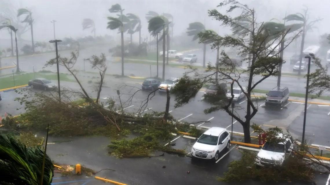 El Gobernador De Puerto Rico
