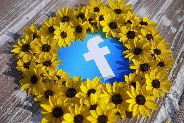 Image of Facebook logo surrounded by flowers.