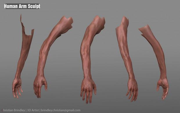 Human Arm Sculpts Image ChristianB Mod DB
