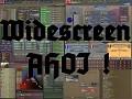 widescreen_FTM