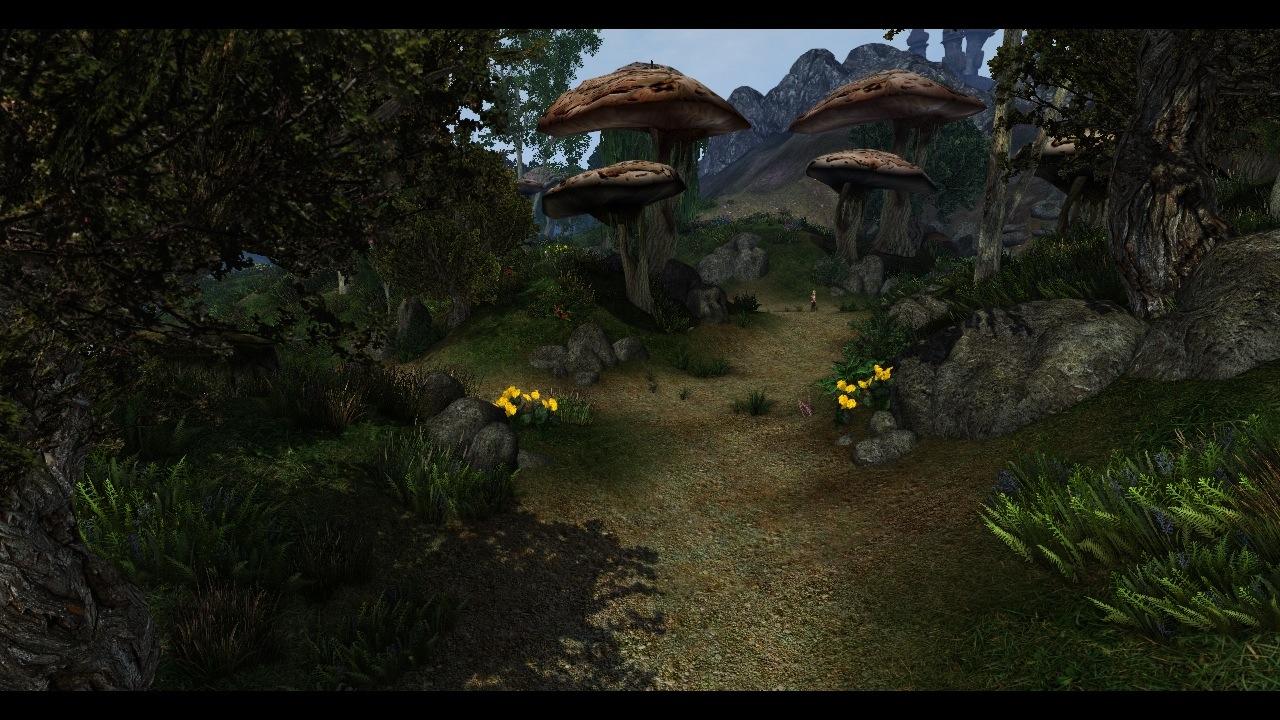 Girls Und Panzer Wallpaper In Game Screens Image Morrowind Overhaul Sounds
