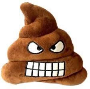 Emoji Poop pillow kudde 35x35 cm