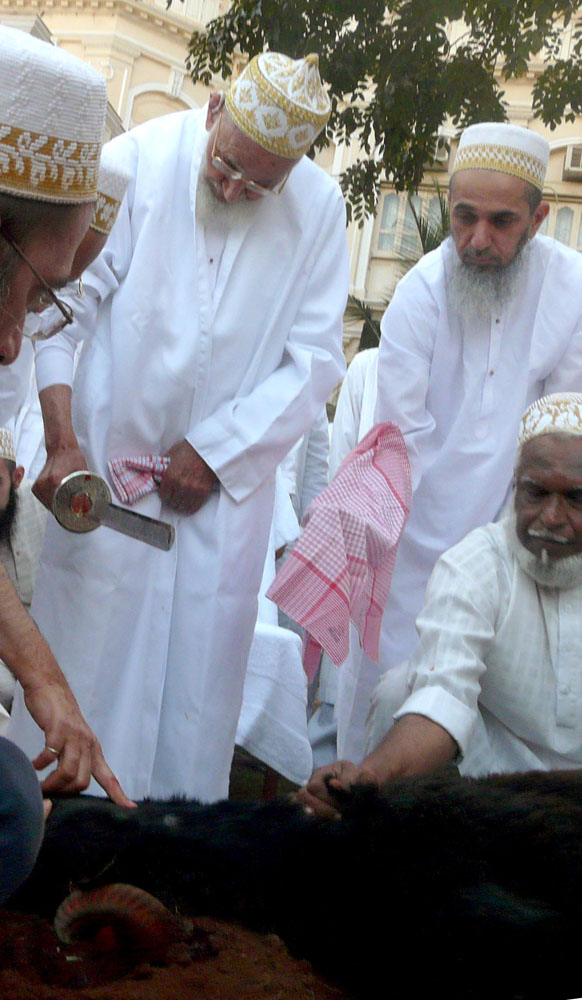 https://i0.wp.com/media.mumineen.org/archive/photos/akhbar1429/zilhaj-9_saifee_mahal_mumbai-1.jpg