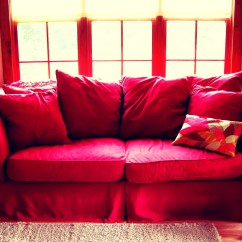 Cat Urine On Sofa Cushion Throw Covers Uk Cleaning Pee From Carpets And Furniture By Samantha