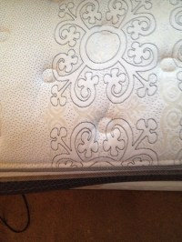 Use High Traffic Carpet Cleaner To Get Out Mattress Stains ...