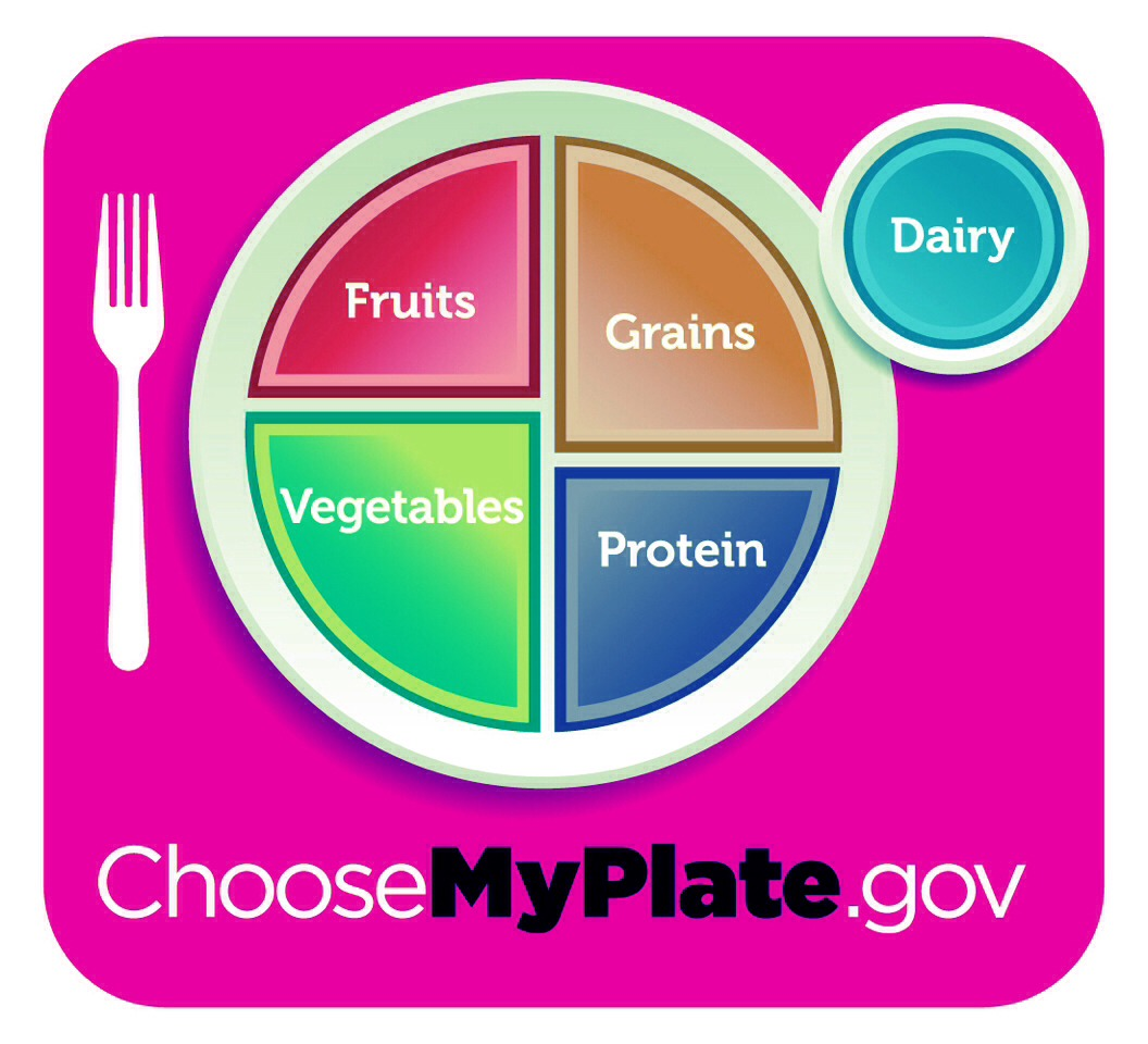 Daily Food Plans Amp Worksheets The Government Wants You